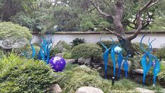 Chihuly in the Garden, Atlanta Botanical Garden, 2016