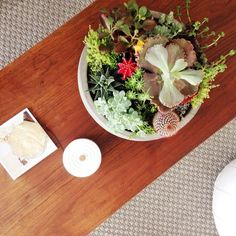 Easy Succulent Garden - DIY Succulent Centerpiece - Country Living