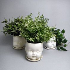 Porcelain baby doll head planter and saucer from Reshape Studio ($50-100)