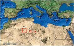 Superficie de la tierra que sería necesario cubrir con sistemas de producción de energía con origen solar para cubrir toda la demanda energética equivalente en el Mundo (izquierda), Unión Europea (centro) y Alemania (derecha)