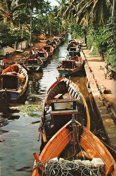 The backwaters of Kerala, India.