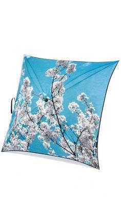 Parapluie Prunus
