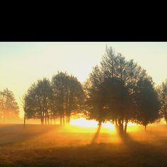 Farm sunrise beauty