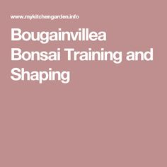 Bonsai Bougainvillea training and shaping methods are described with detailed instructions. Bougainvillea Bonsai, Bonsai Trees, Bonsai Garden, Farm Gardens, Training, Gardening, Planting, Shapes, Farming