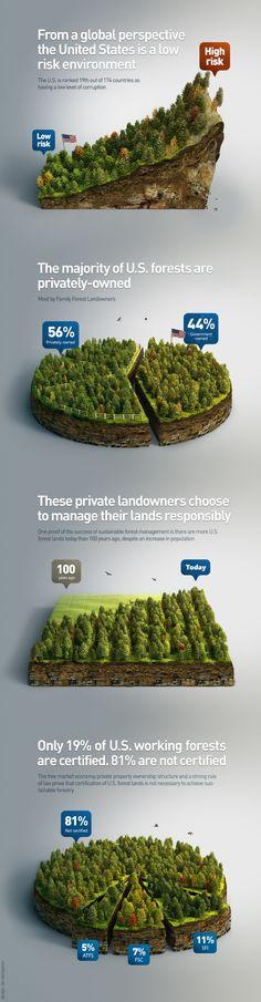 Dribbble - forest-infographics.jpg by Anton Egorov