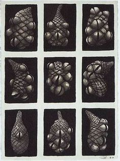 peter randall page drawings - Google Search Still Life Drawing, How To Make Drawing, Natural Forms Gcse, Peter Randall Page, A Touch Of Zen, Abstract Sketches, Gcse Art Sketchbook, Sketchbook Inspiration, Patterns In Nature