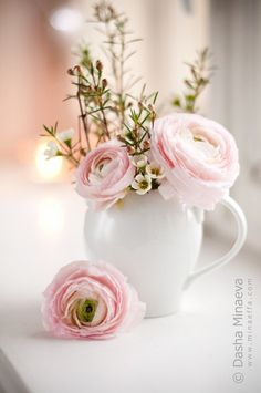 Light pink ranunculus, my all time favorite flower, in a white vase. Beautiful in every way ♥