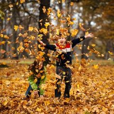 Fall Is In the Air | The air is getting cool and sweaters are being pulled out for evening activities. The fall is a wonderful time to participate in outside family activities that are both fun and educational.