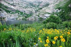 Angel Lake Scenic Drive is 11 miles long and filled with natural beauty. Travelers in Elko, NV should check it out. Take a peek at this sample itinerary if you're looking for more ideas of things to do in Elko, #Nevada: http://touritineraries.com/item/western-adventure-starts-in-elko-nevada/