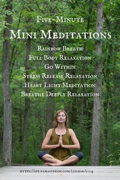 Five-minute Mini Meditations with Liz Lear | guided relaxations | breath meditation | $5 off coupon code: zfuc2psr8h for first 50 by June 19, 2017
