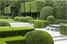 BOXWOOD London Garden