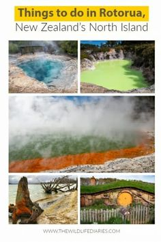 Things to do in Rotorua, New Zealand Capital Of New Zealand, New Zealand North, New Zealand Itinerary, New Zealand Travel Guide, Rotorua New Zealand, Stuff To Do, Things To Do, Over The River, Green Dragon