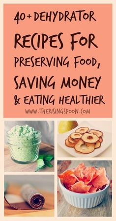 40+ Dehydrator Recipes For Preserving Food, Saving Money & Eating Healthier | http://www.therisingspoon.com