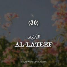 Islam, Instagram