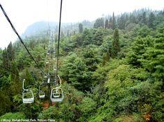Xishan Forest Park, Yunnan China