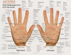 HAND REFLEXOLOGY CHARTS: Hand, Foot & Ear Reflexology Chart Tips! - The Herbal Notebook - Earth Monster World