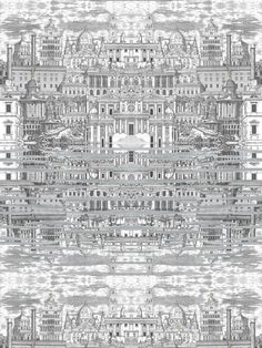cole-and-son-wallpaper-fornasetti-collection-riflesso-77-14051.jpg 600×800 pixels