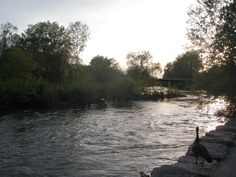 Gibbons Park, London, Ontario