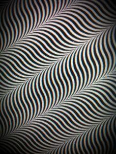 錯覚ゆらゆらその2 氏原直樹のナオキング通信
