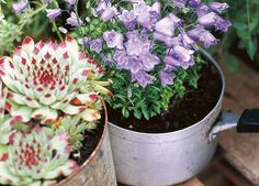How to Make DIY Gardening Containers