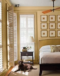 Wooden blinds / ceiling fan / pictures above bed