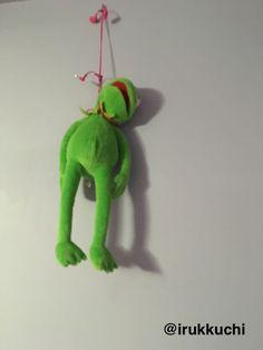 Kermit 50