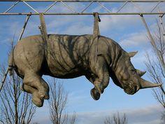 Rhinoceros at Luisenplatz - Installation by italian artist Stefano Bombardieri in Potsdam, Germany.