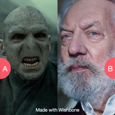 Who is worse? Voldemort or President Snow? Click here to vote @ http://getwishboneapp.com/share/2858618