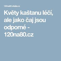 Květy kaštanu léčí, ale jako čaj jsou odporné - 120na80.cz