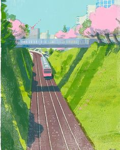 cherry blossom Japan train illustration