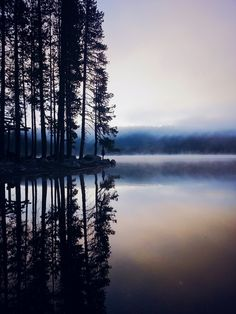 misty lake mornings