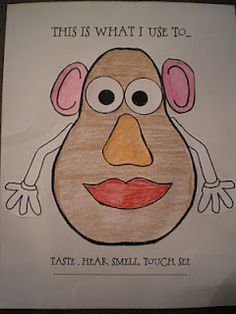 "5 Senses Activity - great to let the kids use a Mr. Potato Head toy for hands on learning--bust out our giant Mr. Potato Head and have them attach parts according to the sense (""What do you use to see?...attach eyes, etc.)"