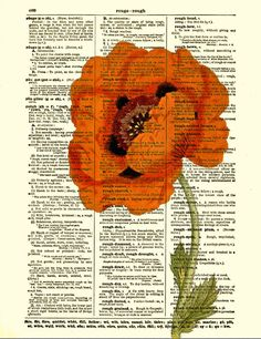 Dictionary Art Print, Poppy Art Print, Red Flower, Art Print, Mixed Media. $10.00, via Etsy.