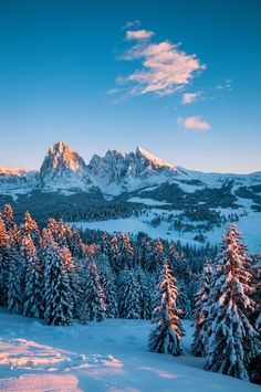 Sunset in the Dolomites, Italy   by Umberto Salvagnin More of our amazing world