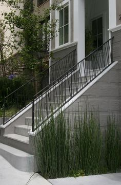 Entry stairs & railing, wonder if we can do this in low long planter boxes in front of railings