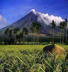 The majestic Mount Mayon, which is considered as the world's near perfect cone-shaped volcano, is one of the candidates of the New 7 Wonders of Nature and is currently ranked number 9 in the list. This scenic volcano is located south of Manila, in the province of Albay, Philippines. Mayon Volcano is the Philippines' most active volcano (47 eruptions since 1616) and is considered to be the world's most perfectly formed volcano for its symmetrical cone.