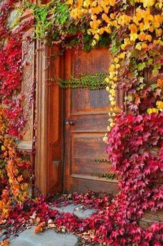 Door to an old winery