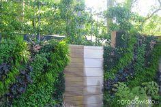 Galeria zdjęć - Ogrodnictwo w pionie czyli ogrody wertykalne - Ogrodowisko