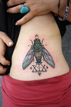 Cicadas are a sacred animal in Chinese and Egyptian culture. They symbolize resurrection and rebirth from the dead, longevity, and the sirens of the insect world. I'm hoping to make this my next tattoo very soon.