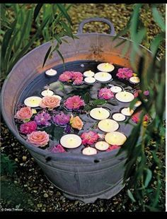 Just a gorgeous illumination bucket.