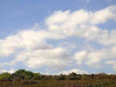 Desde las Islas Canarias  ..Fotografias  : Paisajes de Gran Canaria