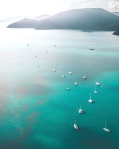 Whitsunday Islands National Park in Queensland, Australia 100 Things To Do, Enchanted Garden, Photography Photos, Beautiful World, The Good Place, National Parks, Scenery, Around The Worlds, Queensland Australia