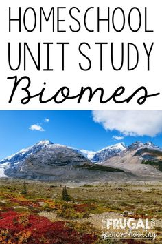 Teach your curious conservationist or ecologist about the types of biomes in the world with this roundup of unit study resources that are free or frugal. #homeschool #unitstudy #typesofbiomes #homeschoolecology #homeschoolscience #earthday #freehomeschoolprintables #homeschoolforfree #classicalconversations Eighth Grade, Help Teaching, Best Blogs, Grandparents Day, Biomes, Ecology, Frugal, Homeschool, Study