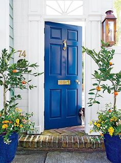 Here are the best feng shui front door colors for your front door. Know how to use color to create a strong and beautiful front door with feng shui. Pintura Exterior, Best Front Doors, The Doors, Entry Doors, Bright Front Doors, Home Front Door, Front Door Paint Colors, Painted Front Doors, Exterior Colors