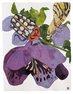 Sarah Graham, artist, botanical works on paper, 2008 to present. Botanical Art, Botanical Illustration, Illustration Art, Painting Inspiration, Art Inspo, Art Antique, Insect Art, Dale Chihuly, Art Sketchbook