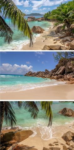 Which Seychelles islands do you want to visit and why? Find out by reading this guide..
