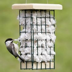 Hanging Nesting Basket Baby birds need warm, cozy nests! Cotton tufts and aspen fibers are super-soft, dry fast and give nestlings a comfy cushion to rest on as they grow. Birds instantly recognize these superior materials and return again and a
