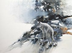 """Waiting for the Fog To Lift"" ( Wolf watching for game )"