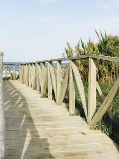 Entrada a la Playa de El Palmar
