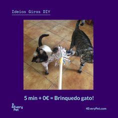 Hoje na rubrica Ideias Giras propomos um brinquedo clássico para entreter o seu gato. Algo tão simples como uma vara nunca perde o seu atractivo e consegue chamar a atenção de todos os gatos. Experimente ;)   Saiba mais em https://4everypet.wordpress.com/2017/06/22/31a/  #4EveryPet #IdeiasGiras #BrinquedoVaraGato #Romeu #Mia